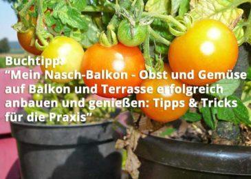 Mein Nasch-Balkon – Obst und Gemüse auf Balkon und Terrasse erfolgreich anbauen und genießen: Tipps & Tricks für die Praxis