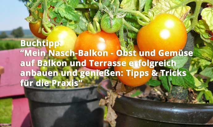 Mein Nasch Balkon Obst Und Gemüse Auf Balkon Und Terrasse