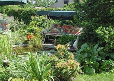Gartenteich Tipps