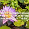 Attraktive Gartengestaltung mit Wasser: 100 Ideen für Becken, Brunnen, Bachläufe, Teiche