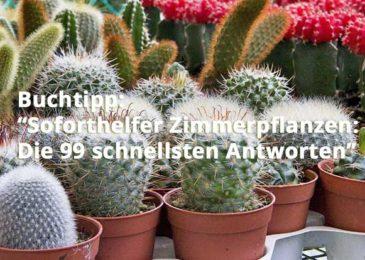 Soforthelfer Zimmerpflanzen: Die 99 schnellsten Antworten
